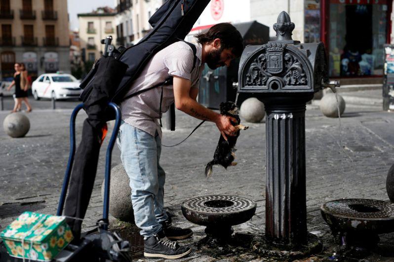 Мужчина дает своей собаке напиться воды из общественного фонтана в Мадриде, Испания.