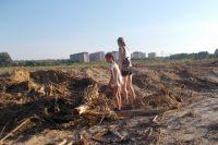 Под благородным предлогом - строительство жилья - в Ростове вырубили деревья и кустарники на площади уже 37 гектаров.