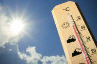Прогноз на август: синоптики предупреждают об аномальной жаре
