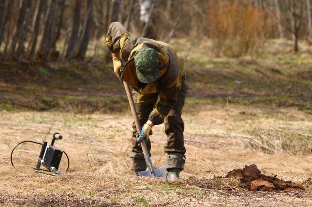 Останки бойца волонтёры нашли в Ленинградской области.