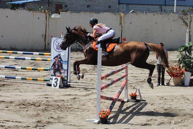 Молодые любители конного спорта из Приморья прошли дистанцию от местного первенства до Кубка России.