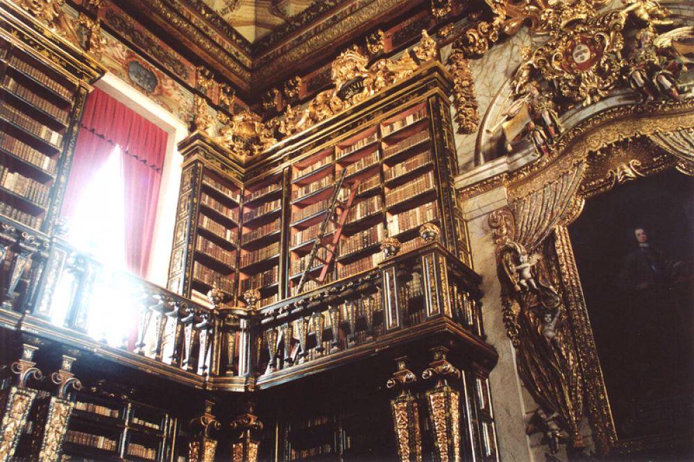Библиотека Жуанина, Коимбра, Португалия. Здание, построенное в 18 веке во время правления короля Жуана V, сегодня является частью Коимбрского университета. Залы в стиле барокко украшает мебель из редких видов дерева, а потолок расписан лиссабонскими художниками. Так же, как в библиотеке дворца Мафра, защищать книги от насекомых помогают живущие здесь летучие мыши.