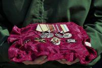 С декабря 2017 г. ведомственными знаками отличия Министерства обороны являются 8 медалей.
