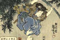 Ниндзя, 1842-1843 гг.