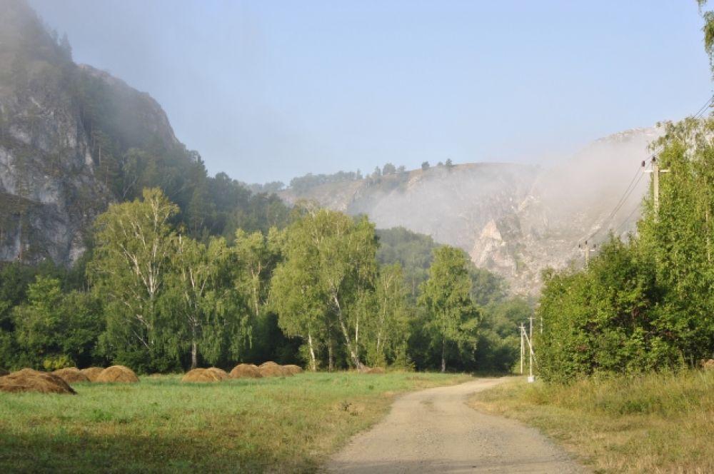 Утренний туман невозможно проспать.