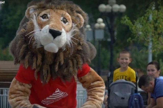 По тюменским улицам бегали лев и конь: футболисты записали видео