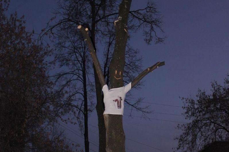 Футболка на дереве.