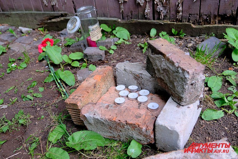 К портрету Шевчука в память об Александре Жунёве пермяки несут цветы и свечи.