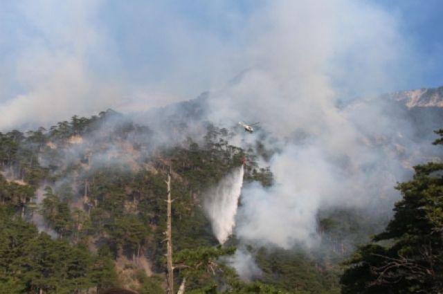 ВКрыму лесной пожар достиг 19 га