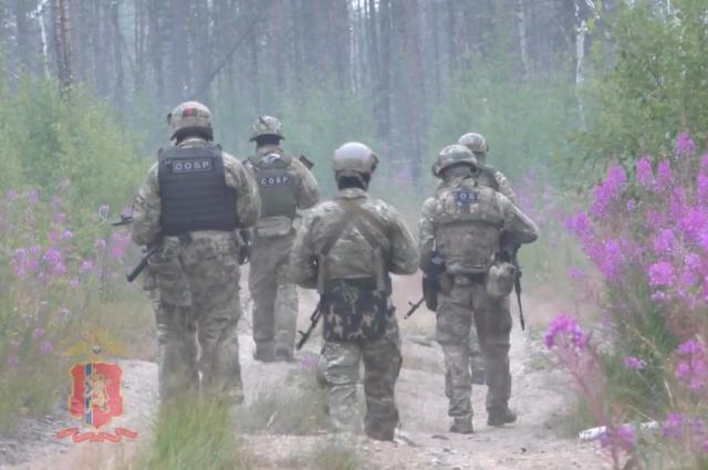 На место была направлена оперативная группа.