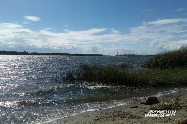 В муниципальную собственность вернули часть берега Калининградского залива.