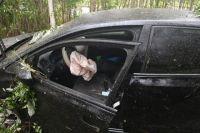 На Ямале увеличилось количество ДТП с участием пьяных водителей