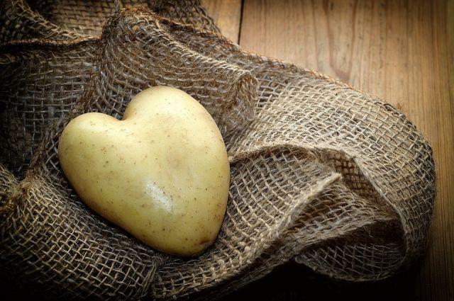 Фото своих необычных овощей вы можете присылать до 1 октября.