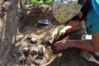 Современная палеонтология значение находок замерзших мамонтов
