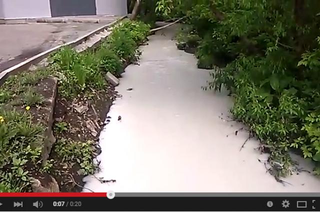 Видео реки Пивоварки, сделанное в 2015 году