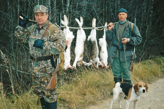 Охота на зайца, Охота на пушных зверей, Библиотека, Охота без границ