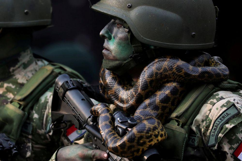 Солдат парагвайской армии марширует перед президентом страны Марио Абдо Бенитесом на военном параде в Асунсьоне, Парагвай.