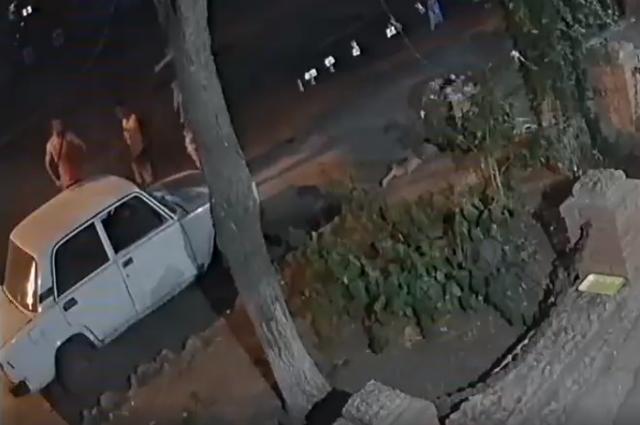 В Бердянске неизвестный задушил собаку местной защитницы животных