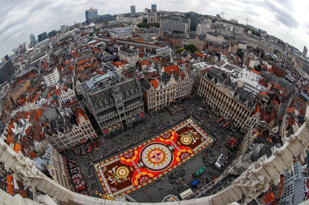 Цветочный ковер из более чем 500 тысяч живых георгинов и бегоний на площади Гран-Плас в Брюсселе, Бельгия.
