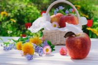 Яблочный Спас, Преображение Господне: история, предписания и запреты