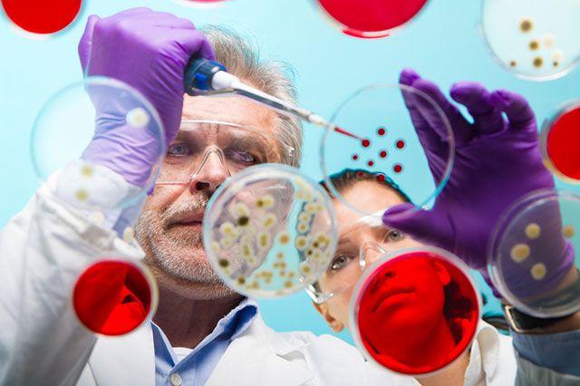 Битва бактерий. Какие препараты помогут при дисбактериозе