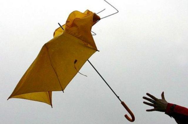 Ожидается усиление ветра - до штормового.