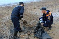 Информация о том, что источником разлива нефтепродуктов могло стать затонувшее  рыболовное судно «Профессор Моисеев» не подтвердилась.