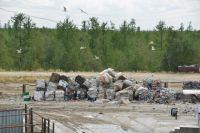 Новоуренгойцы ждут строительства мусоросортировочного завода