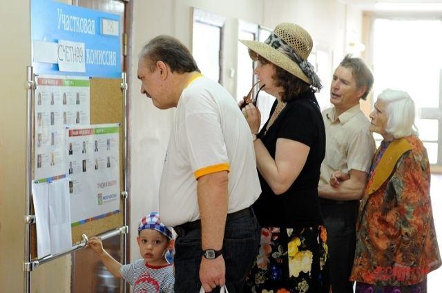 На выборах мэра столицы можно будет проголосовать даже с дачи.