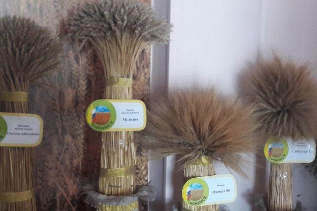 Основная статья экспорта - пшеница.