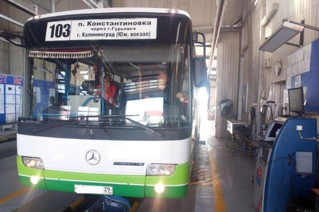 Пять автобусов в Калининграде лишили лицензии на перевозку пассажиров.