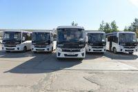 В Ноябрьск поступили низкопольные автобусы