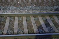 В Переволоцком районе под колесами поезда погиб мужчина.