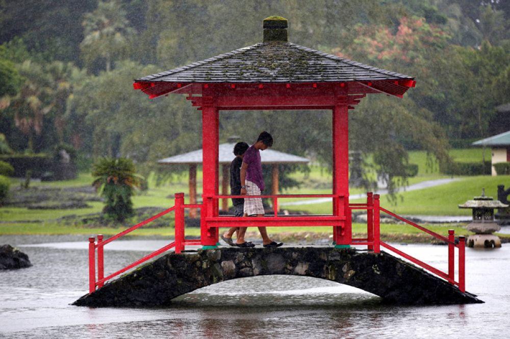 Ранее сообщалось, что президент США Дональд Трамп объявил режим чрезвычайной ситуации в штате Гавайи из-за приближения урагана.