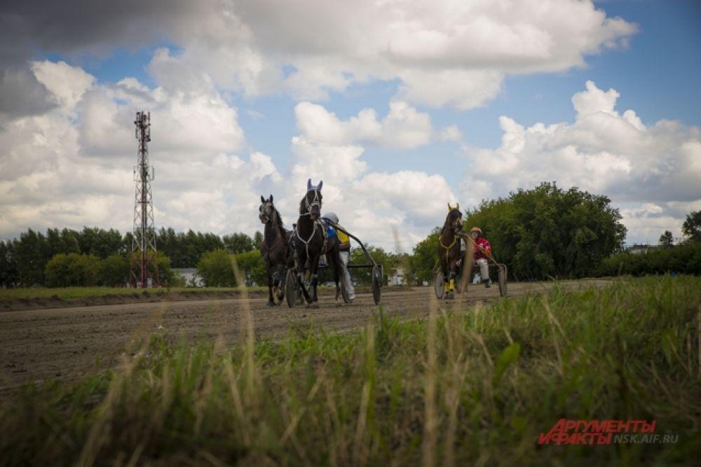 Во время состязаний лошади развивали невероятную скорость.