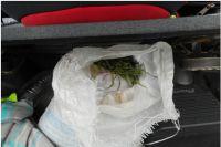 На улице Широтной полиция задержала тюменца с мешком конопли