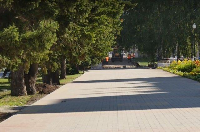 Аллея на ул. Молодежной в Барнауле