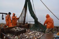 Труд рыбаков Приморья важен для всей России.