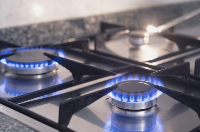 Рева считает, что повышение цены на газ будет временным