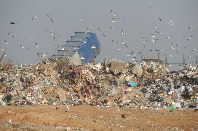 Экологи уверены, что регионам нужно объединиться в решении «мусорной темы».