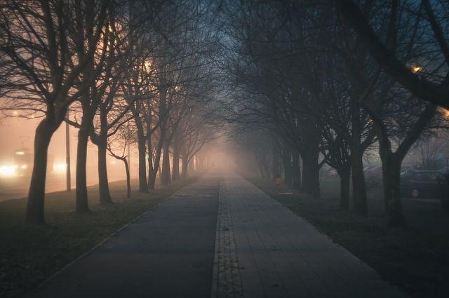 В Кузбассе в ближайшие дни ожидаются утренние туманы.