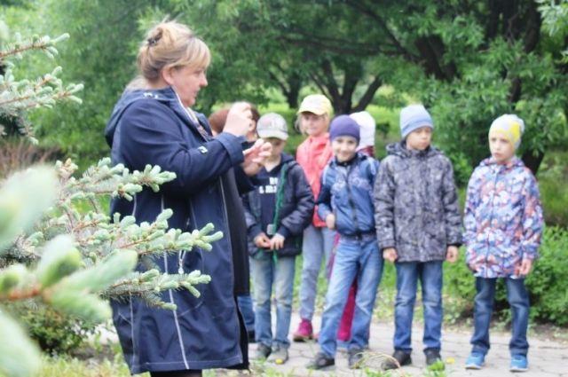 Парково-оранжерейное хозяйство питомника простирается на площади 18, 5 га.