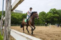 Катание на лошади полезно для здоровья.
