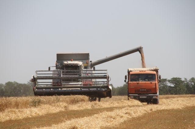 Тюменские аграрии рады каждому погожему дню