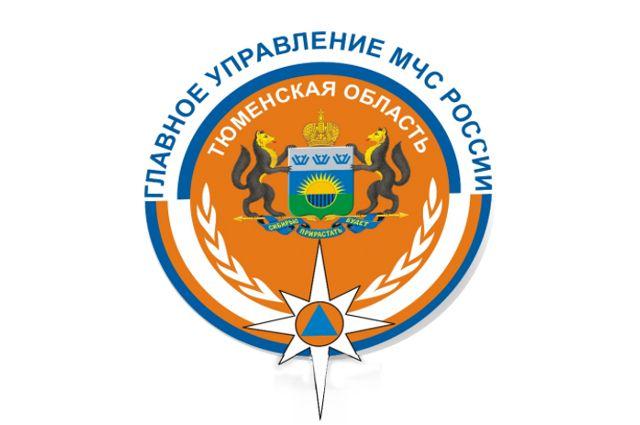 В Тюменском районе сотрудники МЧС достали четыре машины из кюветов