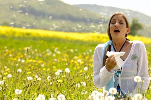 Воздушная угроза: украинцев предупредили о вспышке аллергии в сентябре
