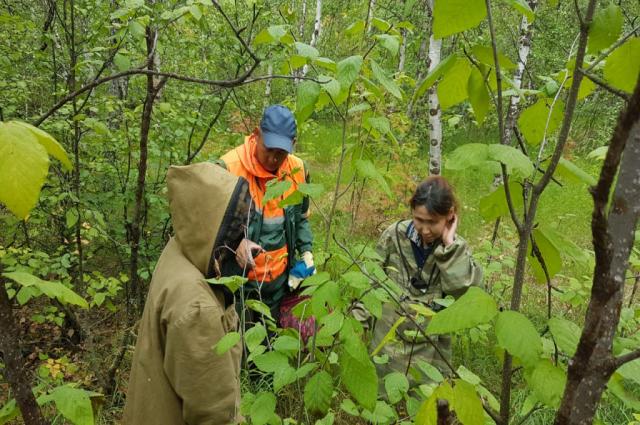 За восемь месяцев на Ямале спасено 837 человек