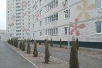 В Тюмени высадили почти 800 деревьев
