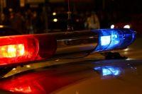Полиция осмотрела место происшествия и опросила свидетелей.