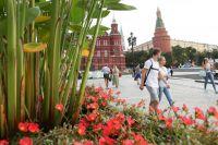 Московский городской фестиваль ландшафтного дизайна «Цветочный джем».